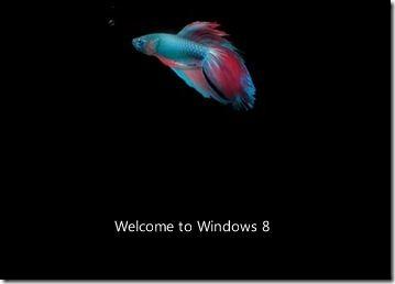 Pantalla de arranque de Windows 8