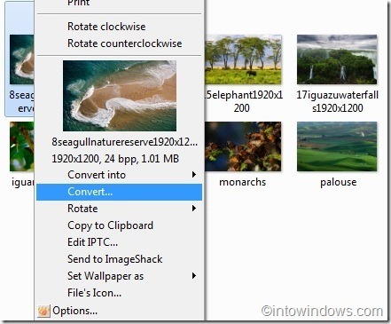 XnView extension for Windows explorer