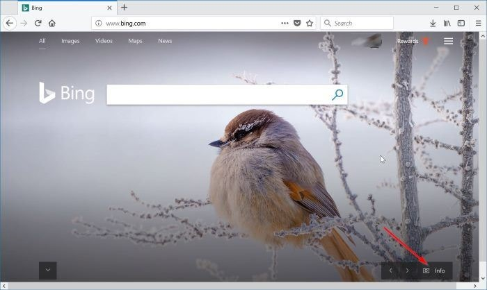 download Bing wallappers for Windows 10 pic1